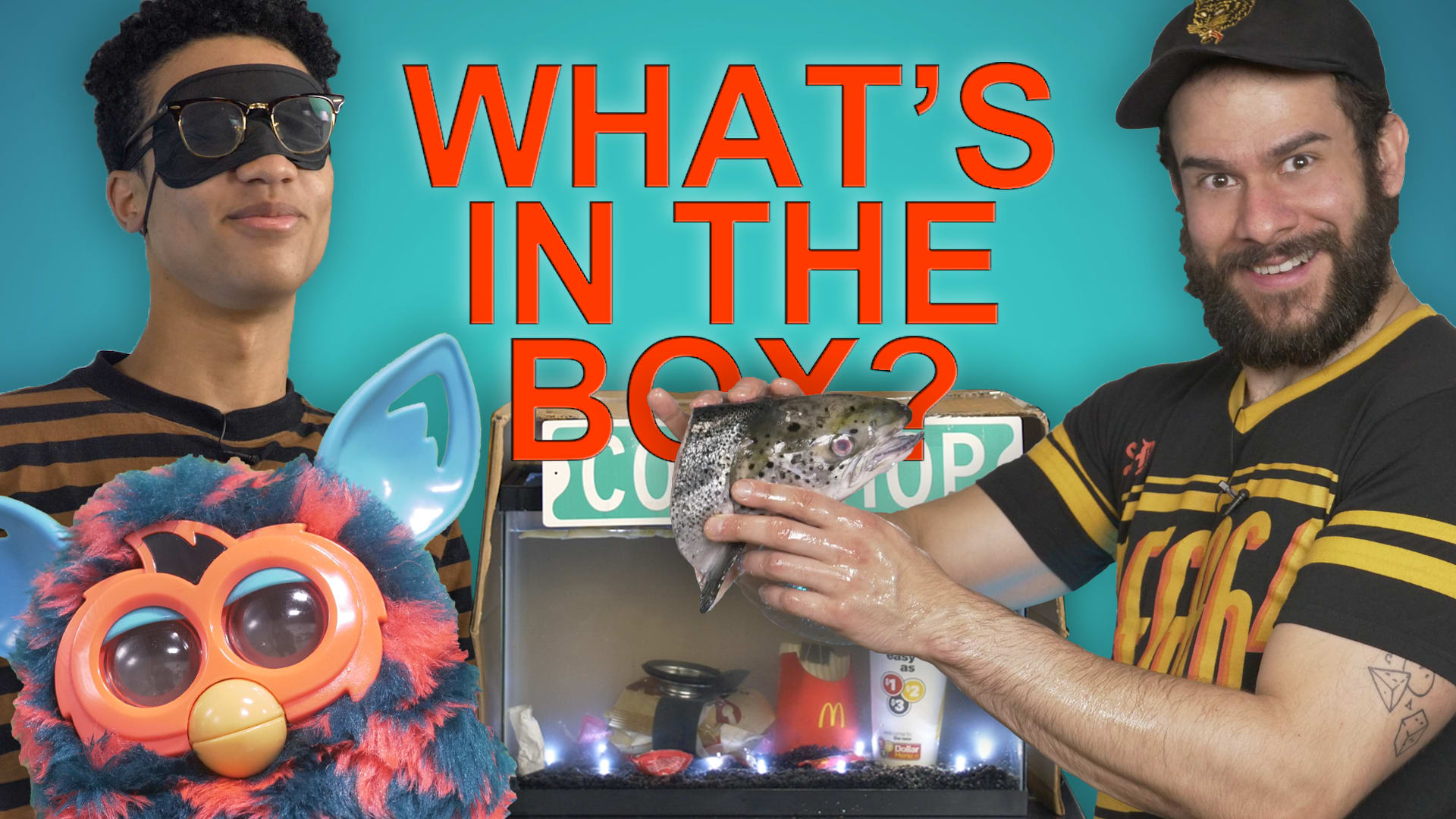 WHAT'S IN THE BOX CHALLENGE (feat  Brett & Jakob) - Rooster